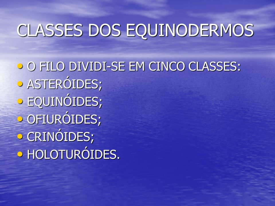CLASSES DOS EQUINODERMOS