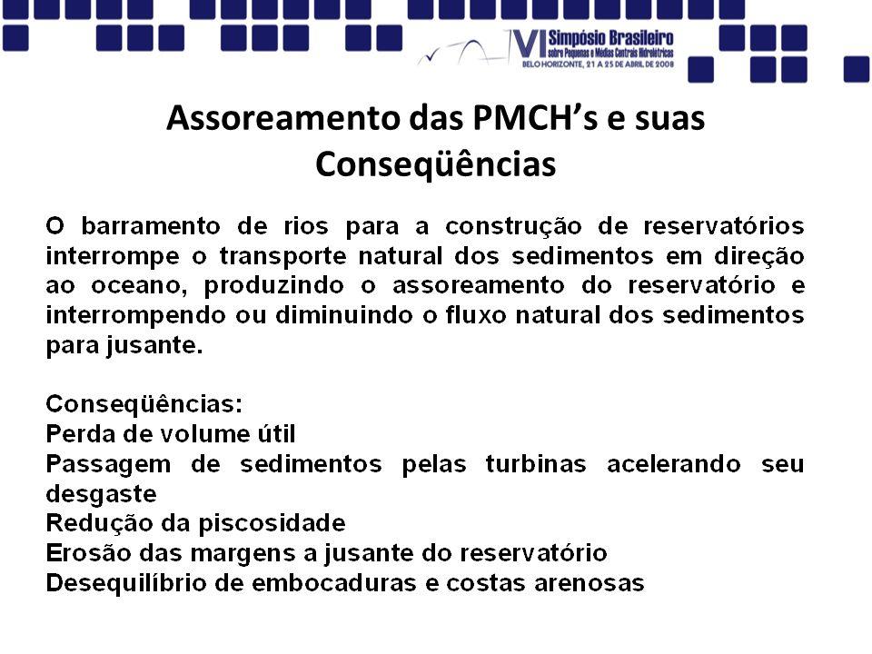Assoreamento das PMCH's e suas Conseqüências