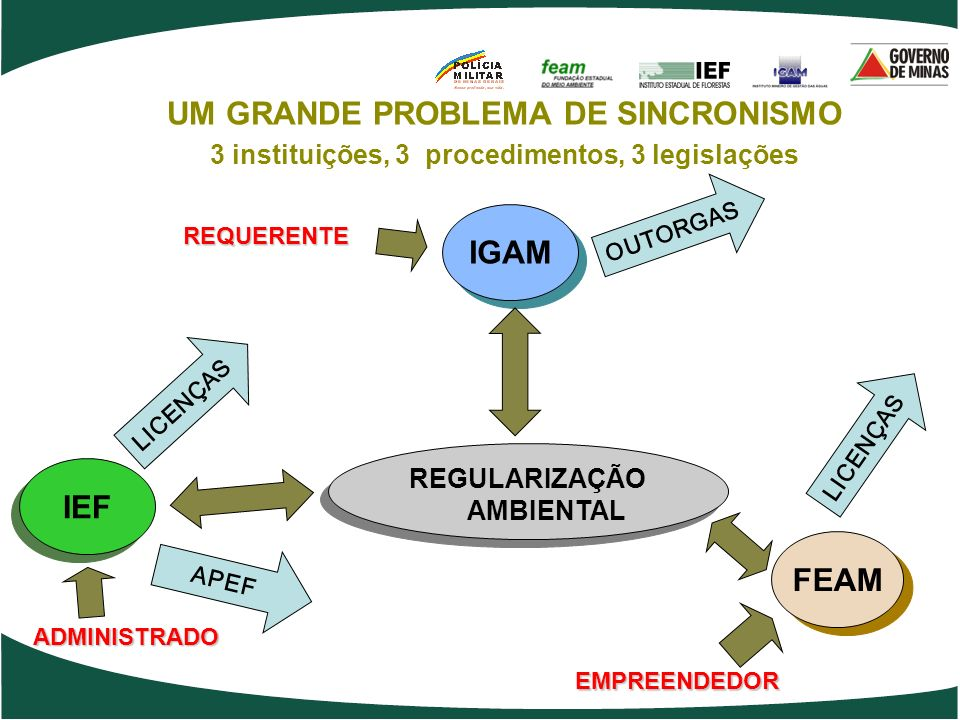 UM GRANDE PROBLEMA DE SINCRONISMO IGAM IEF FEAM
