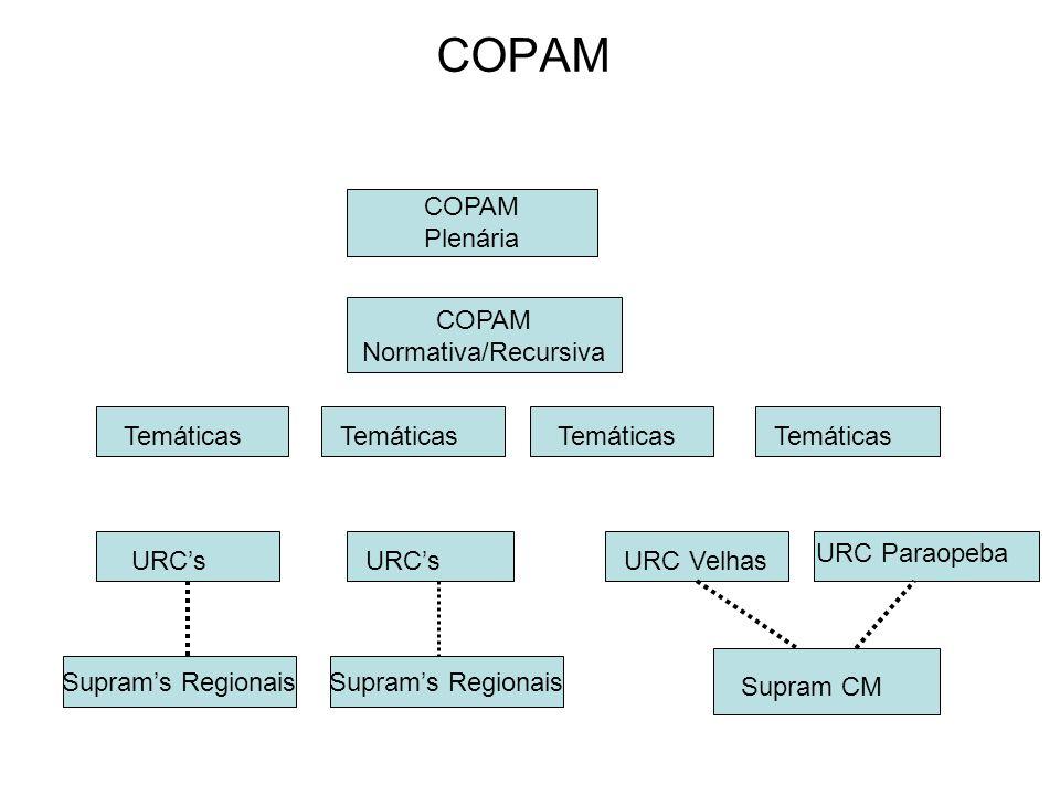 COPAM COPAM Plenária COPAM Normativa/Recursiva Temáticas Temáticas