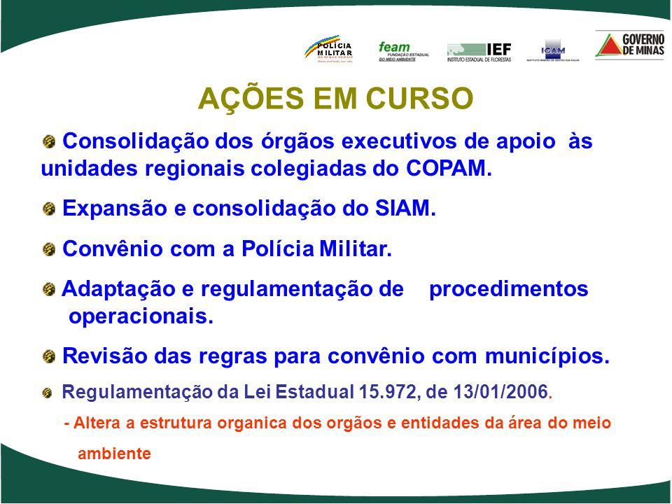 AÇÕES EM CURSO Consolidação dos órgãos executivos de apoio às unidades regionais colegiadas do COPAM.