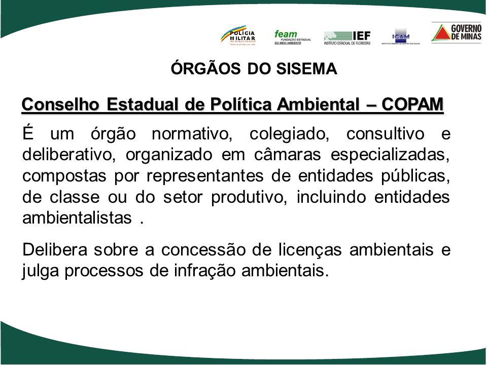 Conselho Estadual de Política Ambiental – COPAM