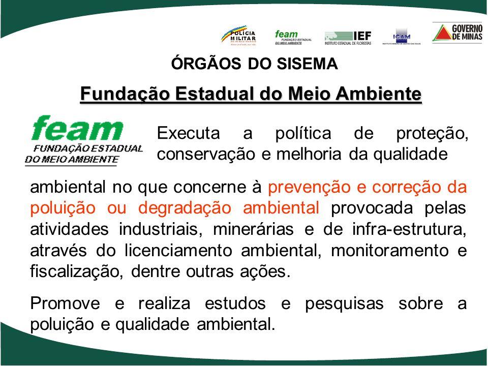 Fundação Estadual do Meio Ambiente