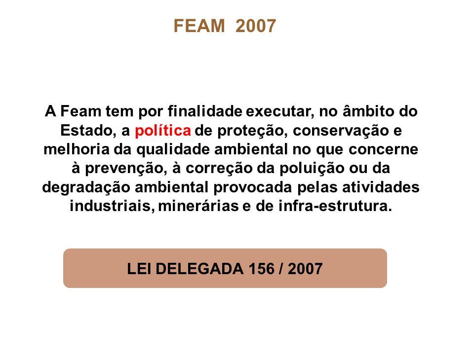 FEAM 2007