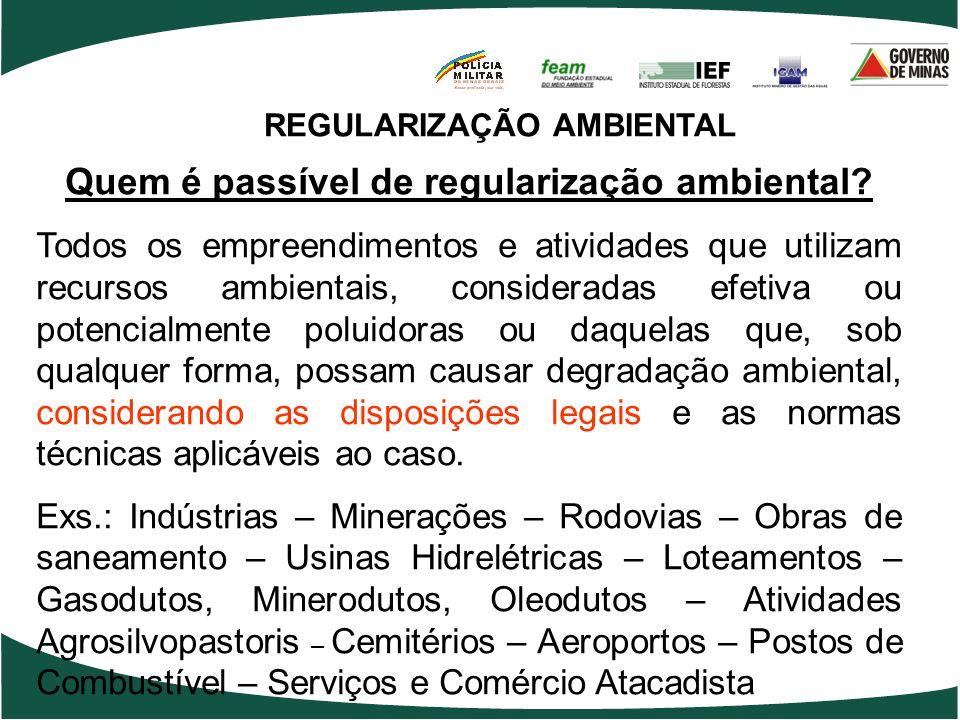 REGULARIZAÇÃO AMBIENTAL Quem é passível de regularização ambiental