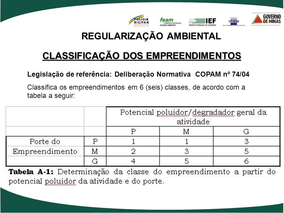 REGULARIZAÇÃO AMBIENTAL CLASSIFICAÇÃO DOS EMPREENDIMENTOS