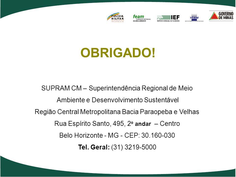 OBRIGADO! SUPRAM CM – Superintendência Regional de Meio