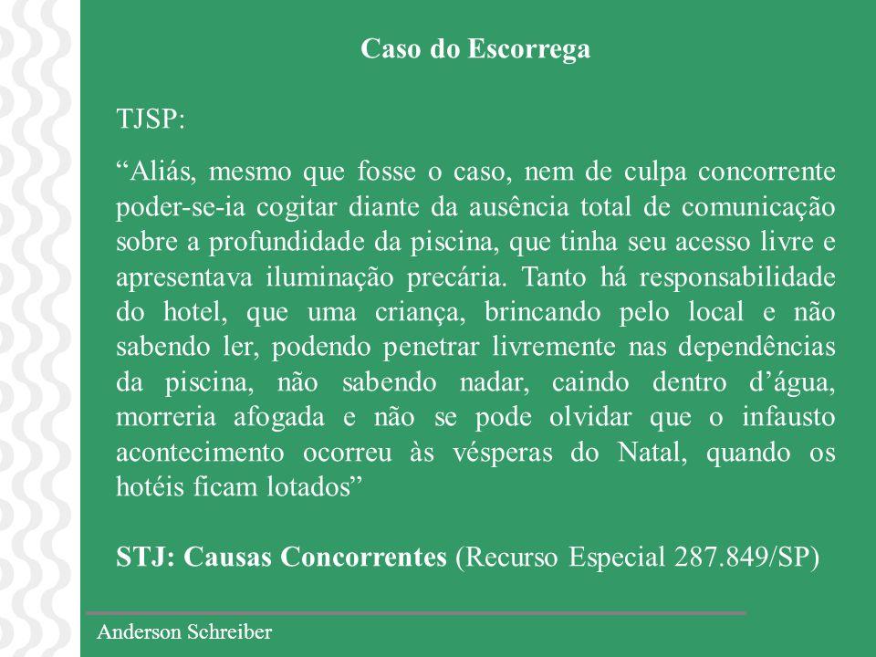 STJ: Causas Concorrentes (Recurso Especial 287.849/SP)