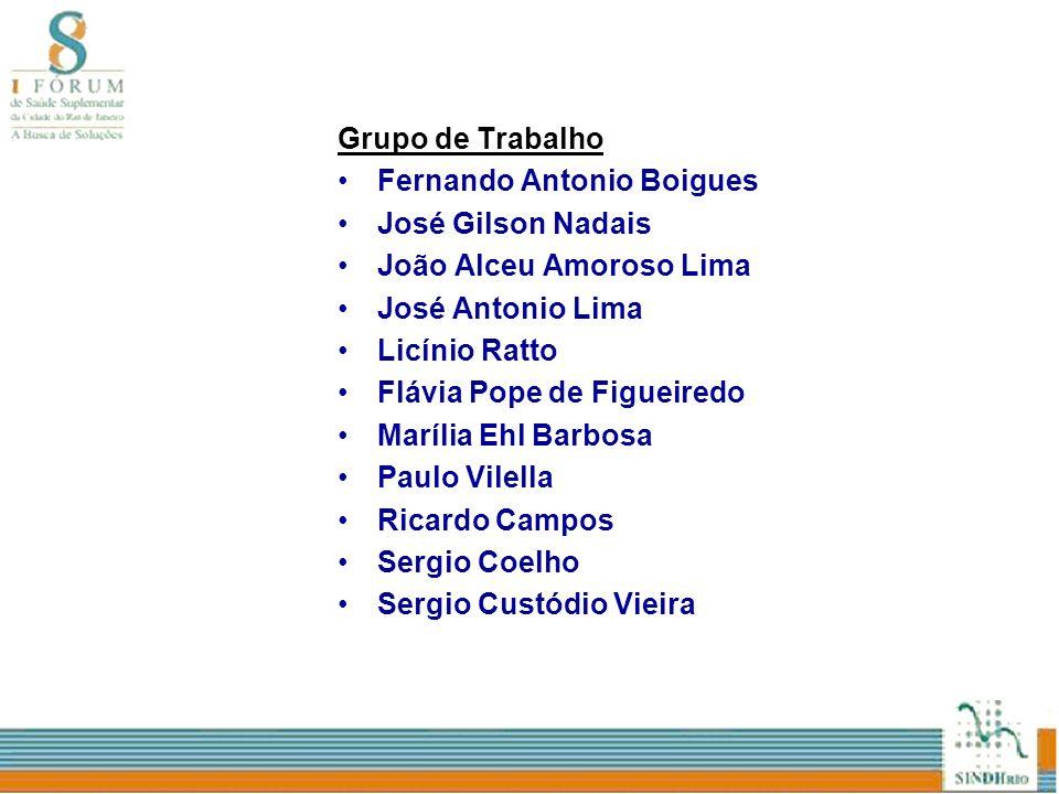 Grupo de TrabalhoFernando Antonio Boigues. José Gilson Nadais. João Alceu Amoroso Lima. José Antonio Lima.