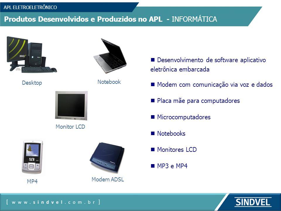 Produtos Desenvolvidos e Produzidos no APL - INFORMÁTICA