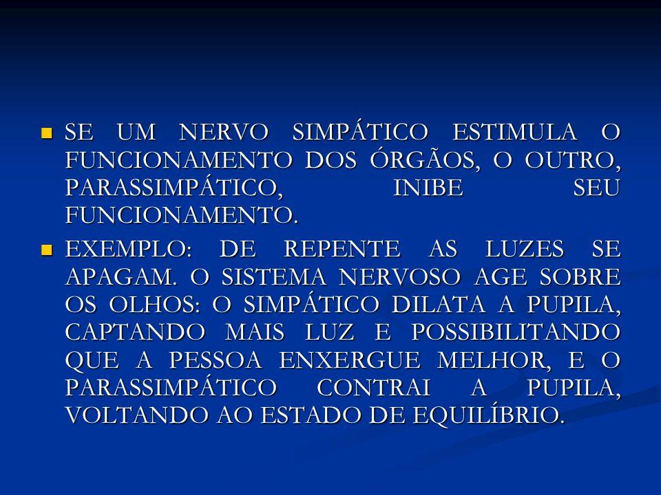SE UM NERVO SIMPÁTICO ESTIMULA O FUNCIONAMENTO DOS ÓRGÃOS, O OUTRO, PARASSIMPÁTICO, INIBE SEU FUNCIONAMENTO.