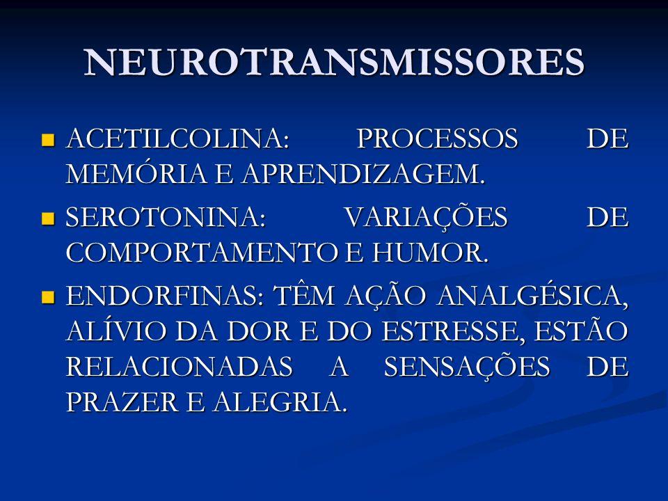 NEUROTRANSMISSORES ACETILCOLINA: PROCESSOS DE MEMÓRIA E APRENDIZAGEM.