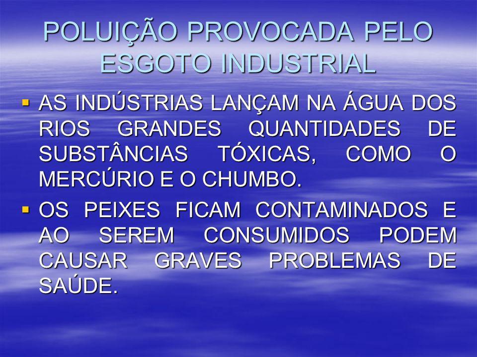 POLUIÇÃO PROVOCADA PELO ESGOTO INDUSTRIAL