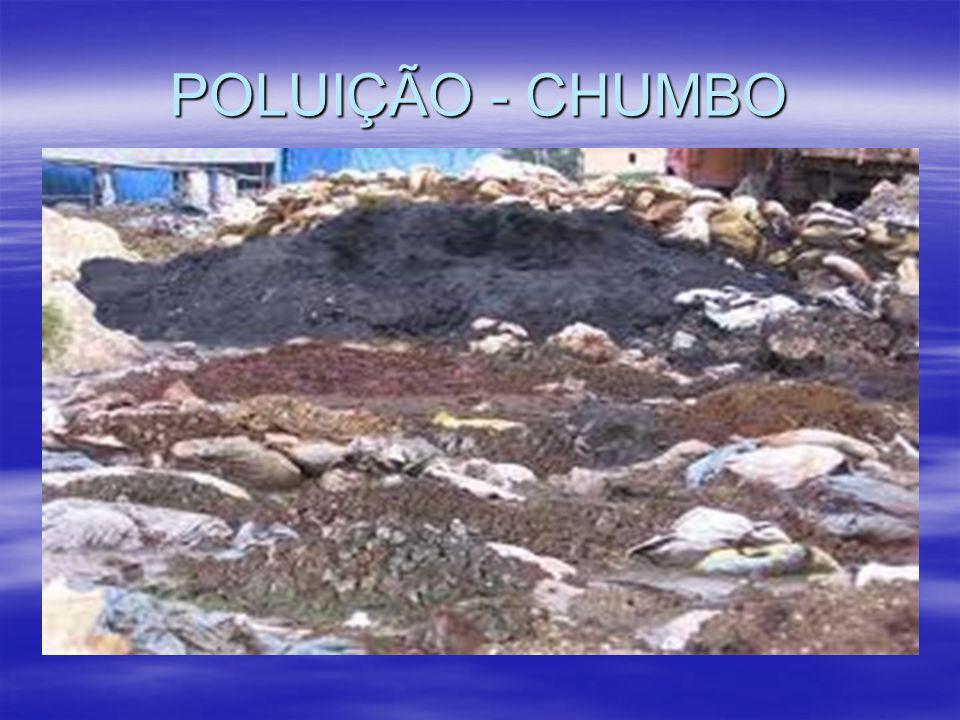 POLUIÇÃO - CHUMBO