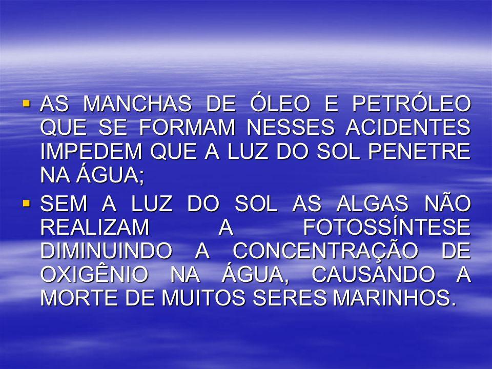 AS MANCHAS DE ÓLEO E PETRÓLEO QUE SE FORMAM NESSES ACIDENTES IMPEDEM QUE A LUZ DO SOL PENETRE NA ÁGUA;