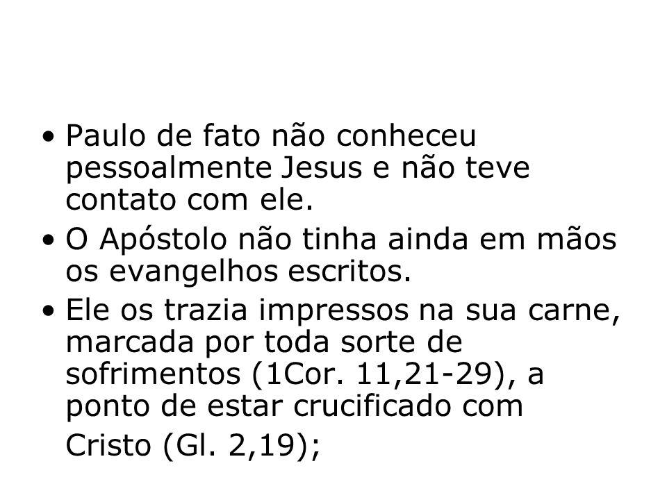 Paulo de fato não conheceu pessoalmente Jesus e não teve contato com ele.