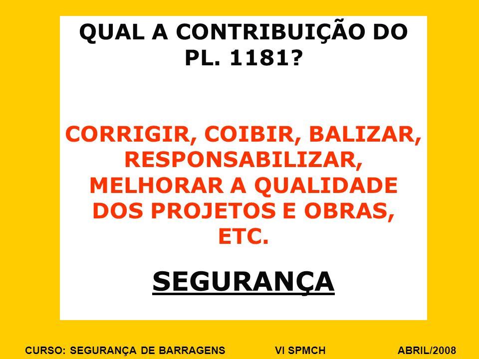 QUAL A CONTRIBUIÇÃO DO PL. 1181