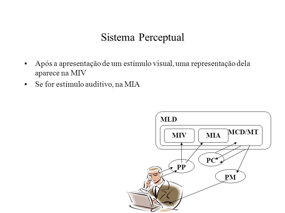 Sistema Perceptual Após a apresentação de um estímulo visual, uma representação dela aparece na MIV.
