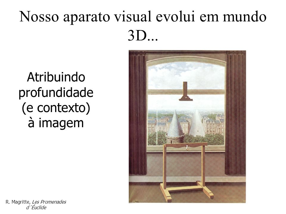 Nosso aparato visual evolui em mundo 3D...