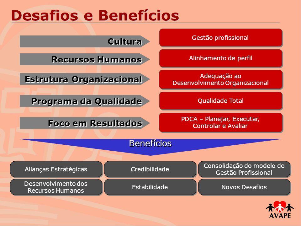Desafios e Benefícios Cultura Recursos Humanos
