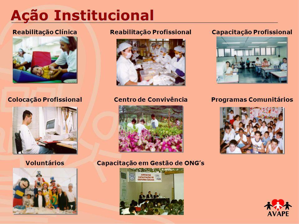 Ação Institucional Reabilitação Clínica Reabilitação Profissional