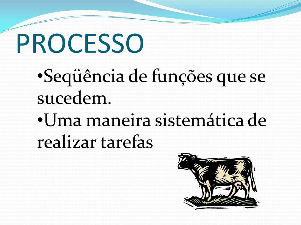 PROCESSO Seqüência de funções que se sucedem.