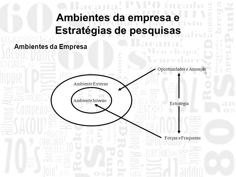 Ambientes da empresa e Estratégias de pesquisas