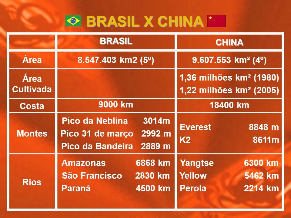 BRASIL X CHINA BRASIL CHINA Área 8.547.403 km2 (5º) 9.607.553 km² (4º)