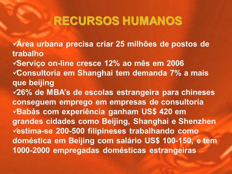 RECURSOS HUMANOS Área urbana precisa criar 25 milhões de postos de trabalho. Serviço on-line cresce 12% ao mês em 2006.