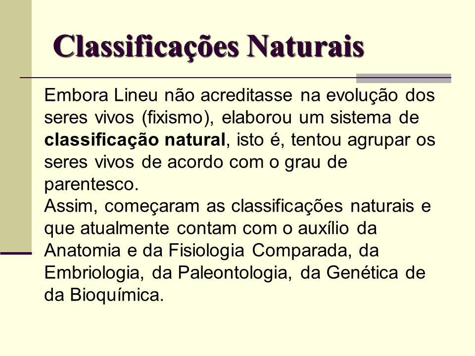 Classificações Naturais