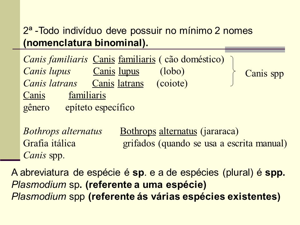 2ª -Todo indivíduo deve possuir no mínimo 2 nomes (nomenclatura binominal).
