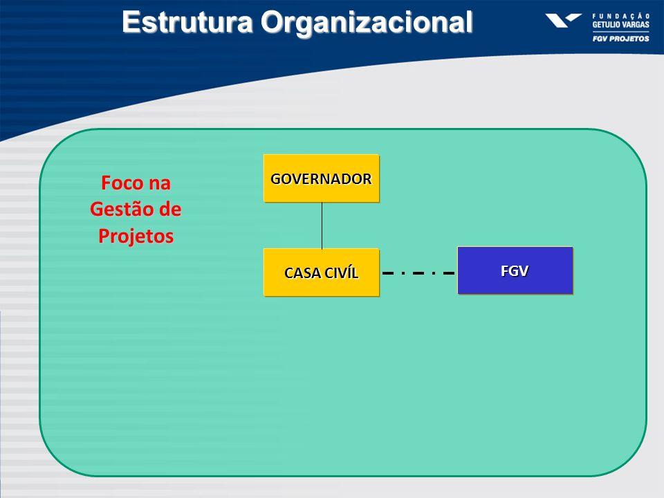 Estrutura Organizacional Foco na Gestão de Projetos