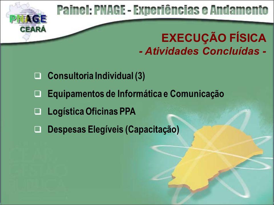 EXECUÇÃO FÍSICA - Atividades Concluídas - Consultoria Individual (3)