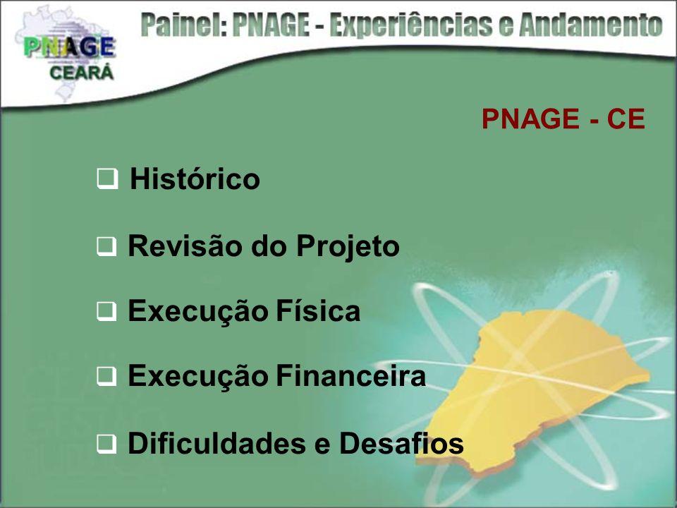Histórico Revisão do Projeto Execução Física Execução Financeira