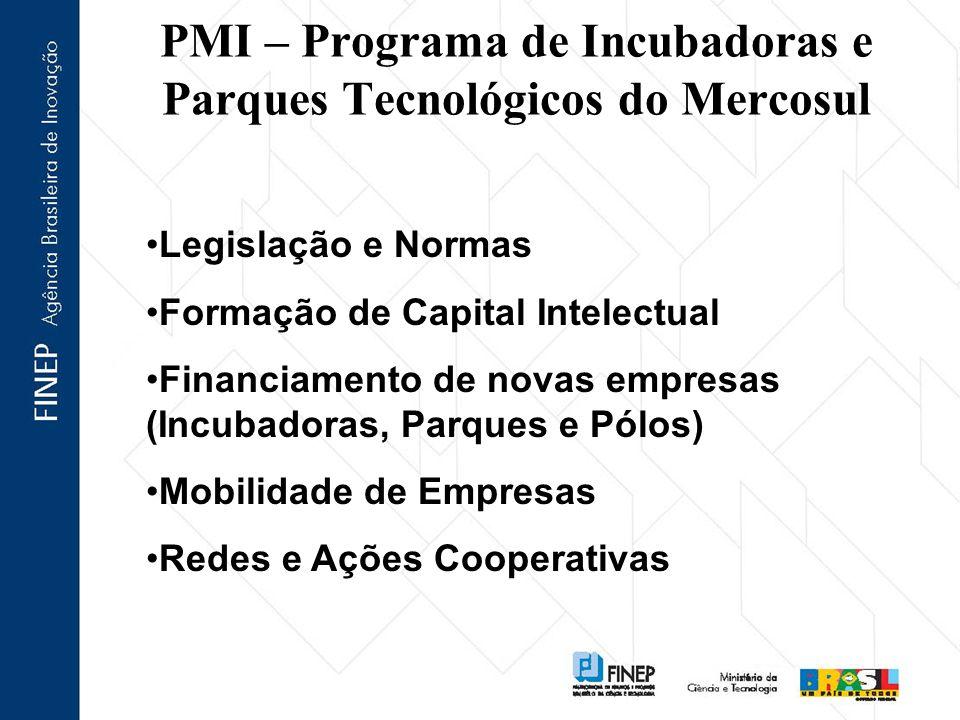 PMI – Programa de Incubadoras e Parques Tecnológicos do Mercosul