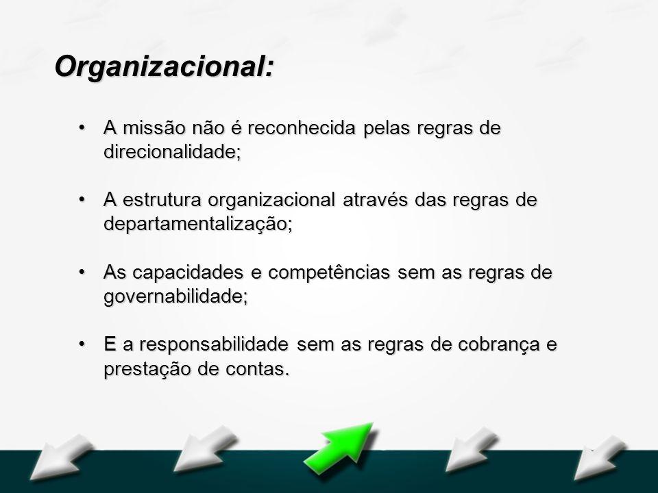 Organizacional: A missão não é reconhecida pelas regras de direcionalidade; A estrutura organizacional através das regras de departamentalização;