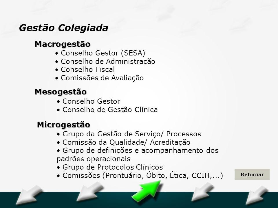 Gestão Colegiada Macrogestão Mesogestão Microgestão