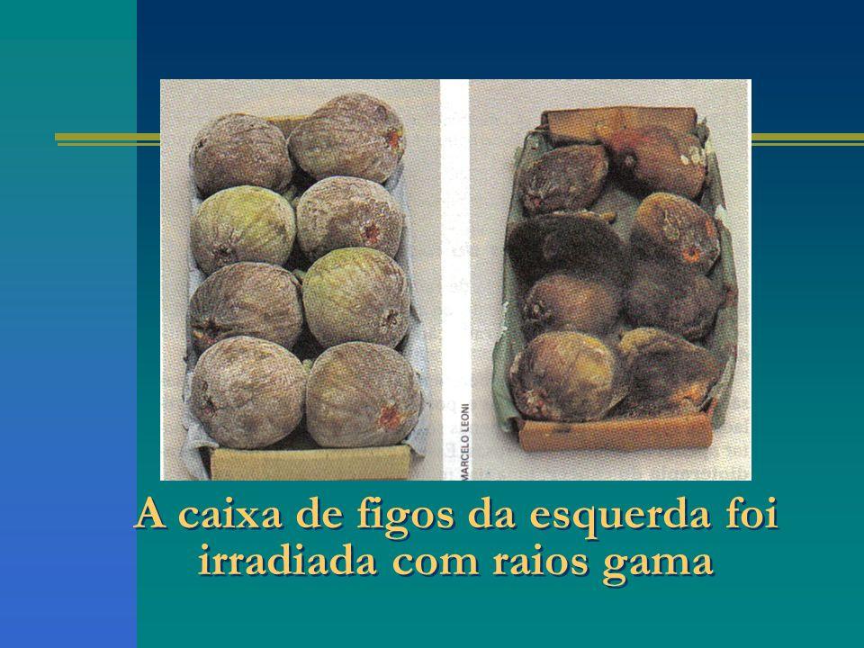 A caixa de figos da esquerda foi irradiada com raios gama
