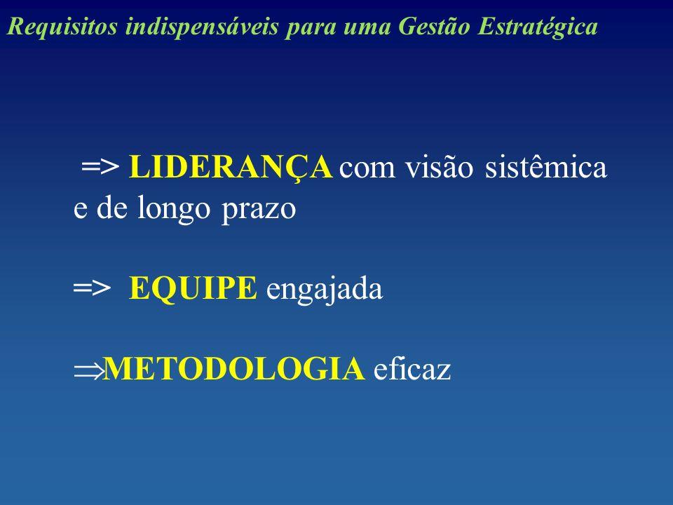 => LIDERANÇA com visão sistêmica e de longo prazo