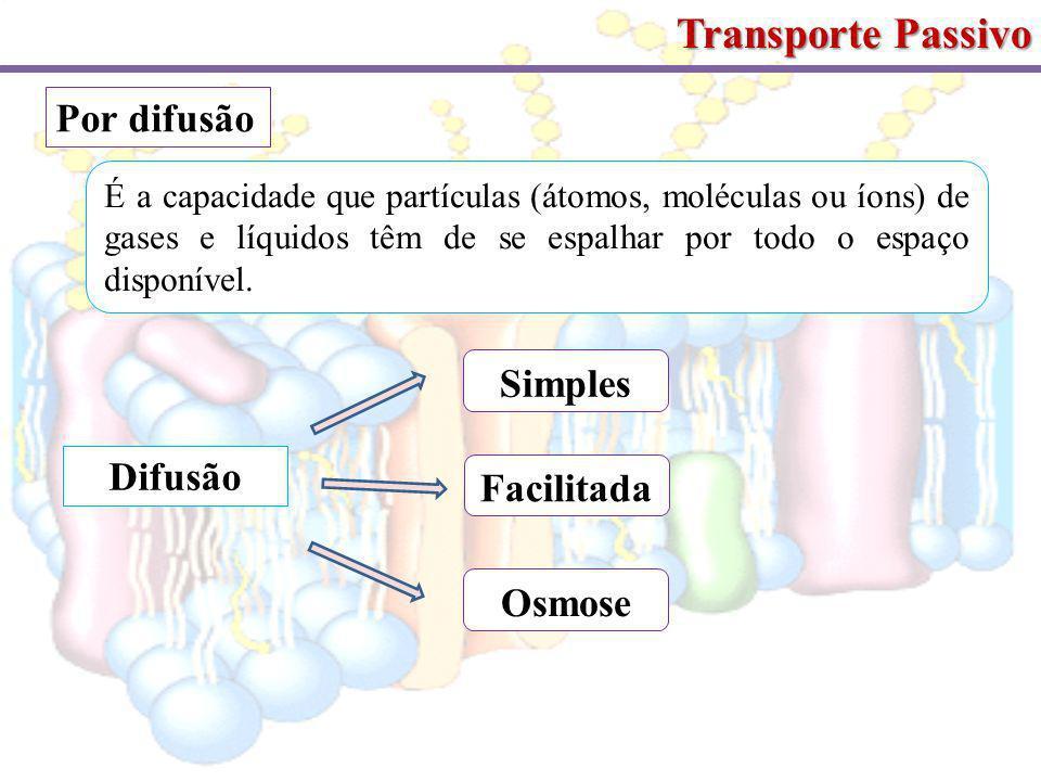Transporte Passivo Por difusão Simples Difusão Facilitada Osmose