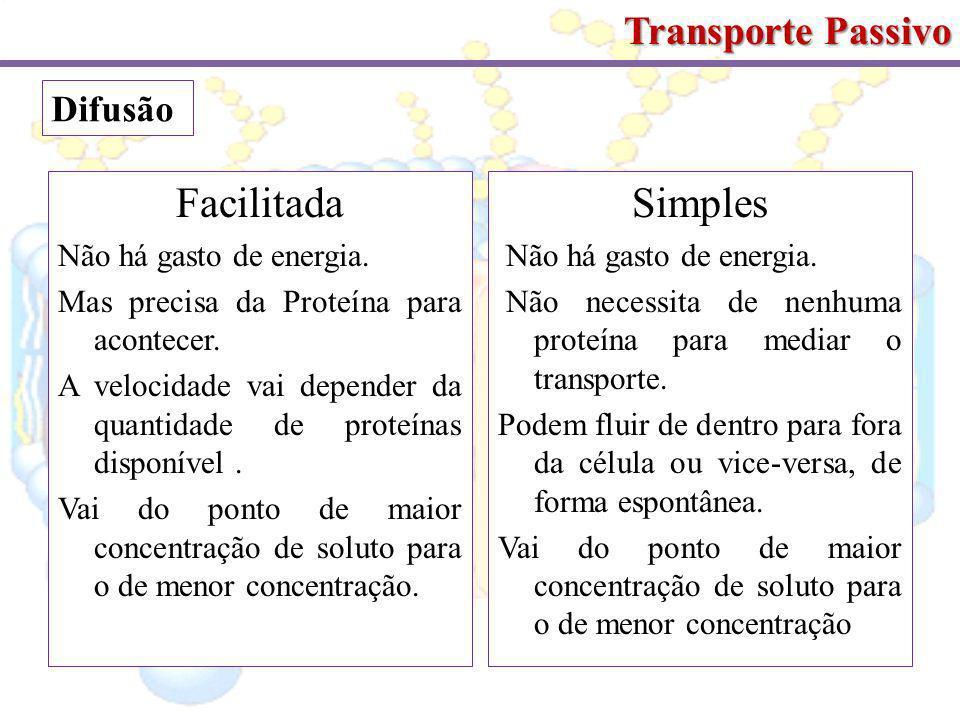 Facilitada Simples Transporte Passivo Difusão Não há gasto de energia.