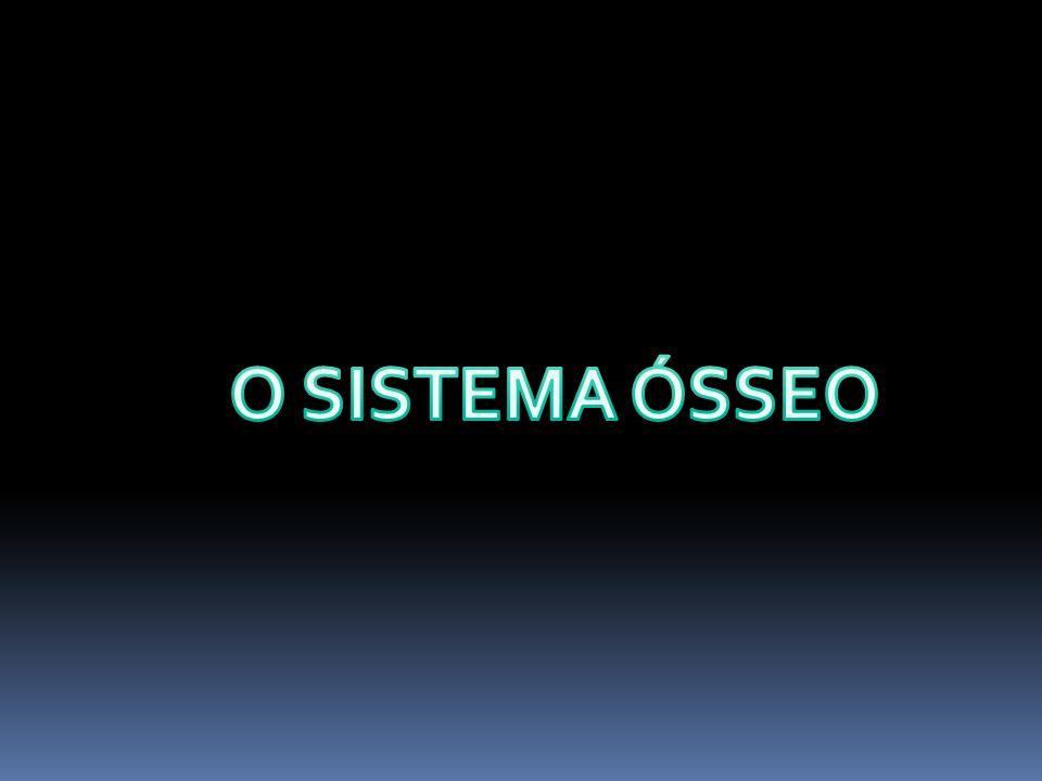 O SISTEMA ÓSSEO
