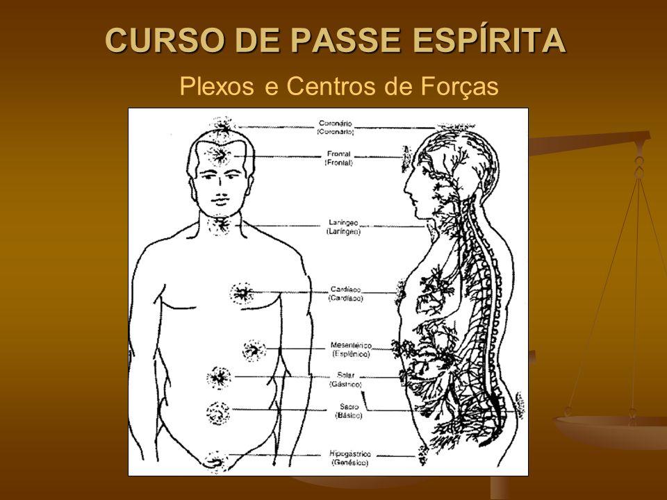 CURSO DE PASSE ESPÍRITA Plexos e Centros de Forças
