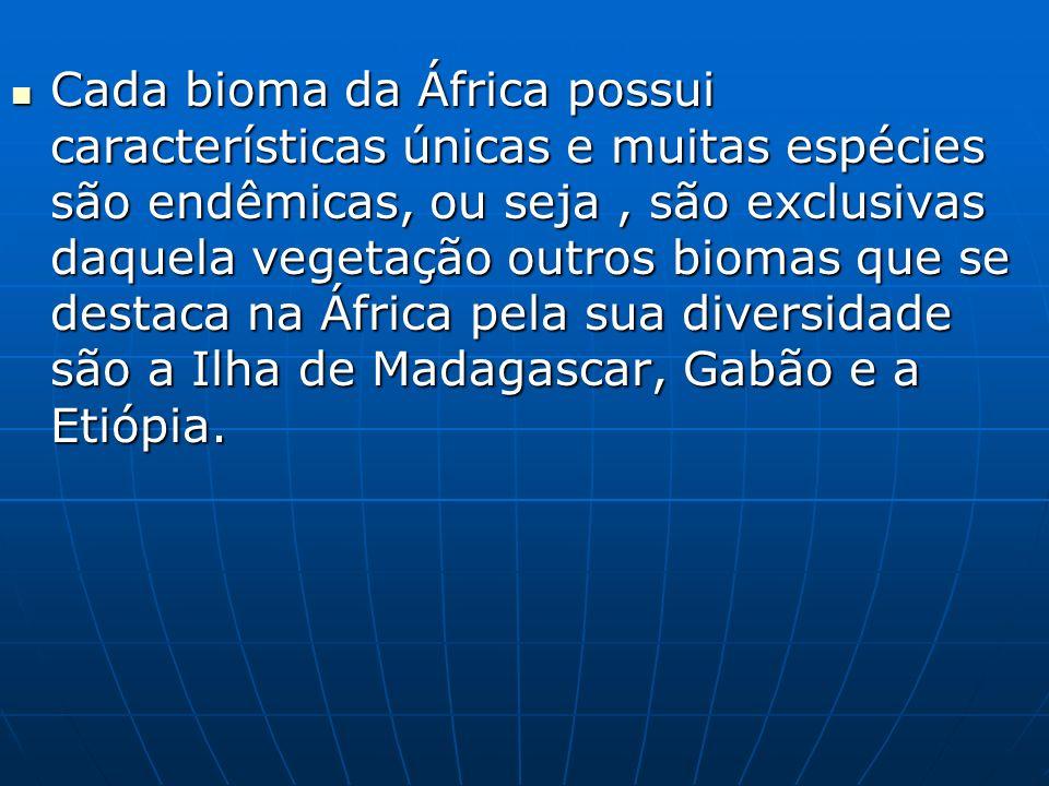 Cada bioma da África possui características únicas e muitas espécies são endêmicas, ou seja , são exclusivas daquela vegetação outros biomas que se destaca na África pela sua diversidade são a Ilha de Madagascar, Gabão e a Etiópia.