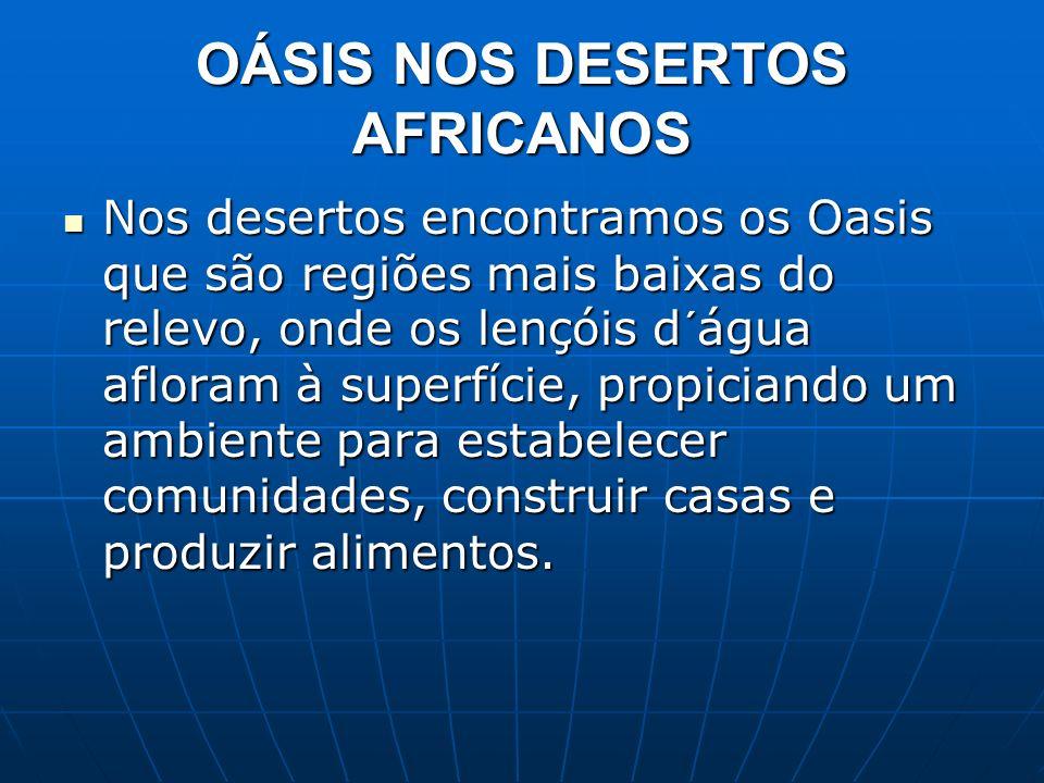 OÁSIS NOS DESERTOS AFRICANOS