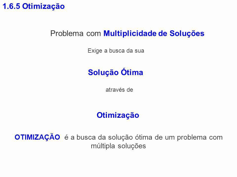 Problema com Multiplicidade de Soluções