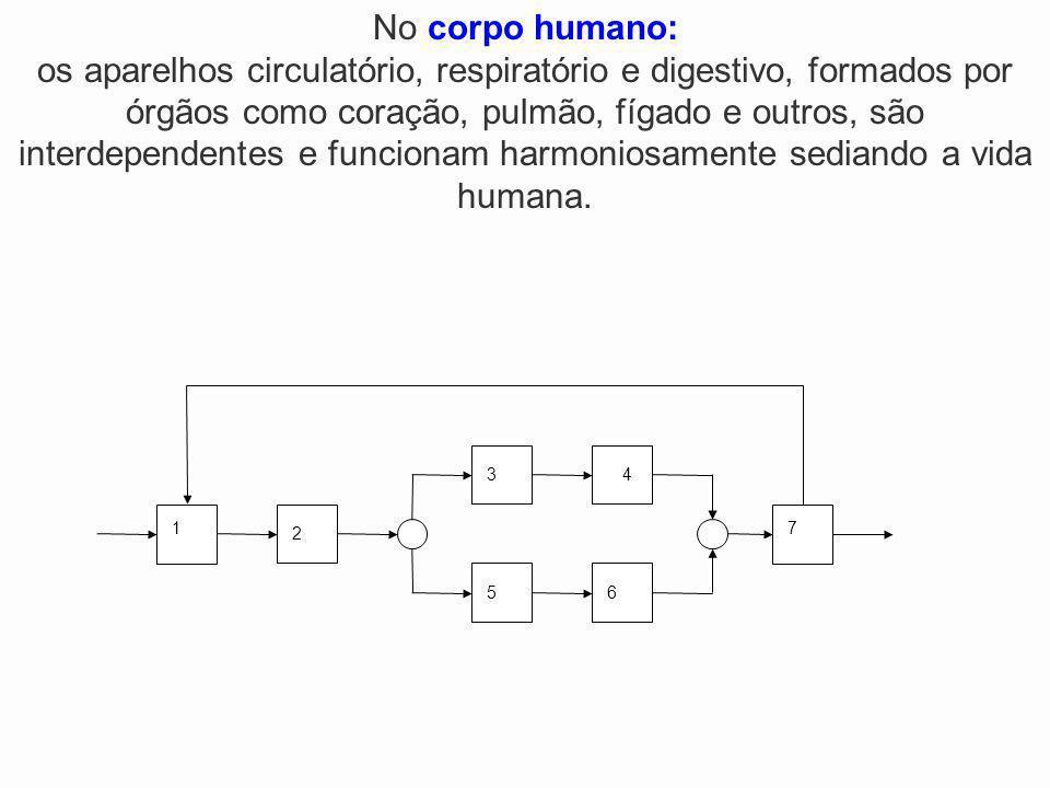 No corpo humano: os aparelhos circulatório, respiratório e digestivo, formados por órgãos como coração, pulmão, fígado e outros, são interdependentes e funcionam harmoniosamente sediando a vida humana.