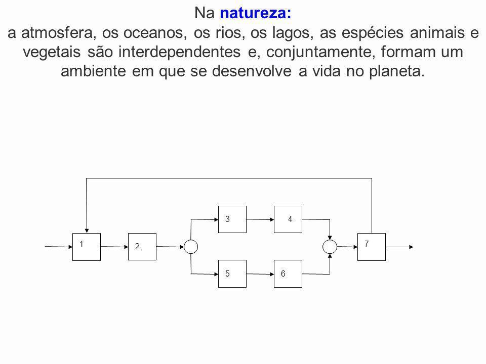 Na natureza: a atmosfera, os oceanos, os rios, os lagos, as espécies animais e vegetais são interdependentes e, conjuntamente, formam um ambiente em que se desenvolve a vida no planeta.