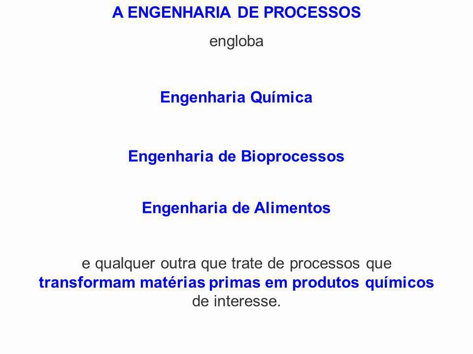 A ENGENHARIA DE PROCESSOS engloba