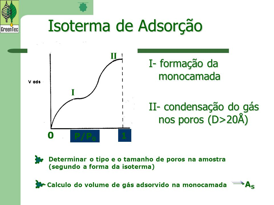 Isoterma de Adsorção I- formação da monocamada